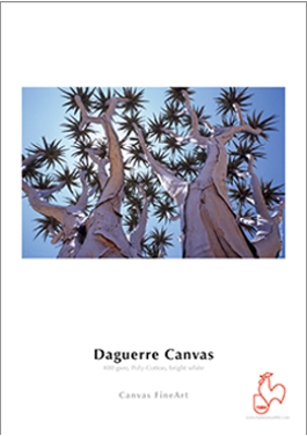 daguerre_canvas_400_gsm_big.jpg